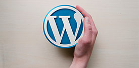 Diseño de paginas web Wordpress en Madrid y Toledo.